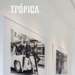 Trópica: Galeria de Arte – Um oásis de arte contemporânea em Ipanema