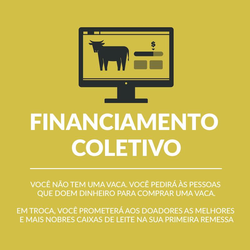Modelos de Negócio com Financiamento Coletivo